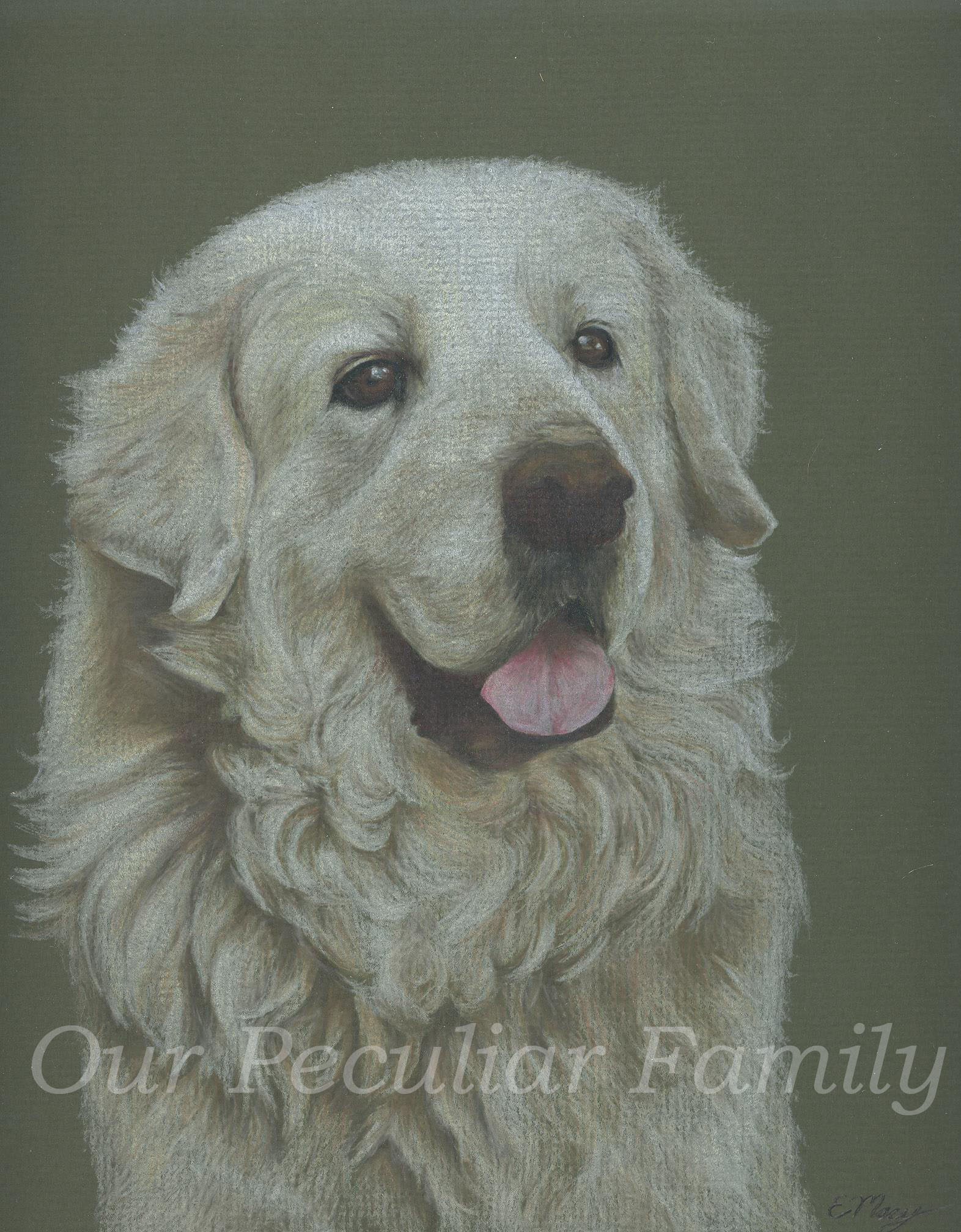 Wolf ~ Colored Pencil by Elisabeth Macy