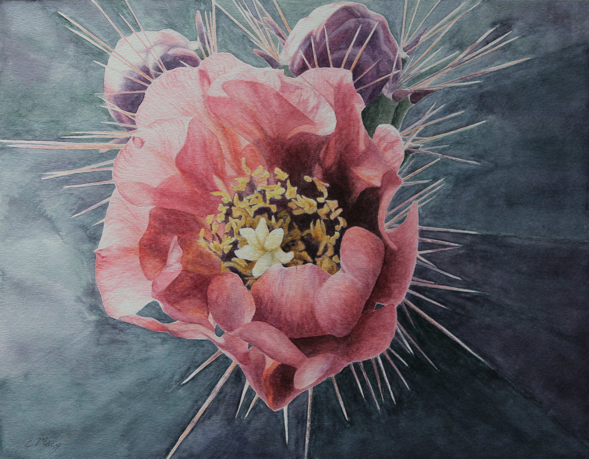 Unexpected Beauty is currently in Sacramento at the State Capitol as a part of the California Contemporary Art Collection exhibit. It will be on display for the next eighteen months.