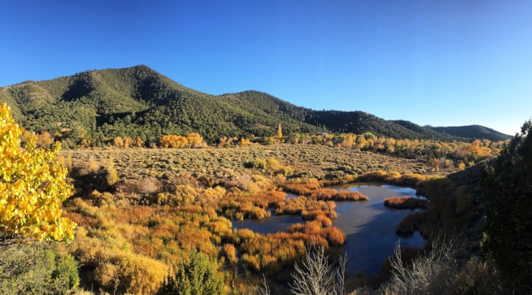 Vibrant fall colors at the Santa Fe Canyon Preserve