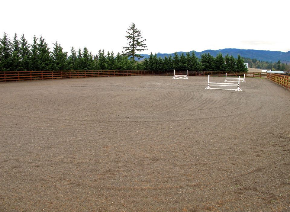 Outdoor Arena  250x120 outdoor arena with all weather sand and french drains