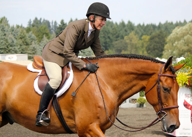 sh_hunters_and_jumpers_horse_show_competitor.jpg