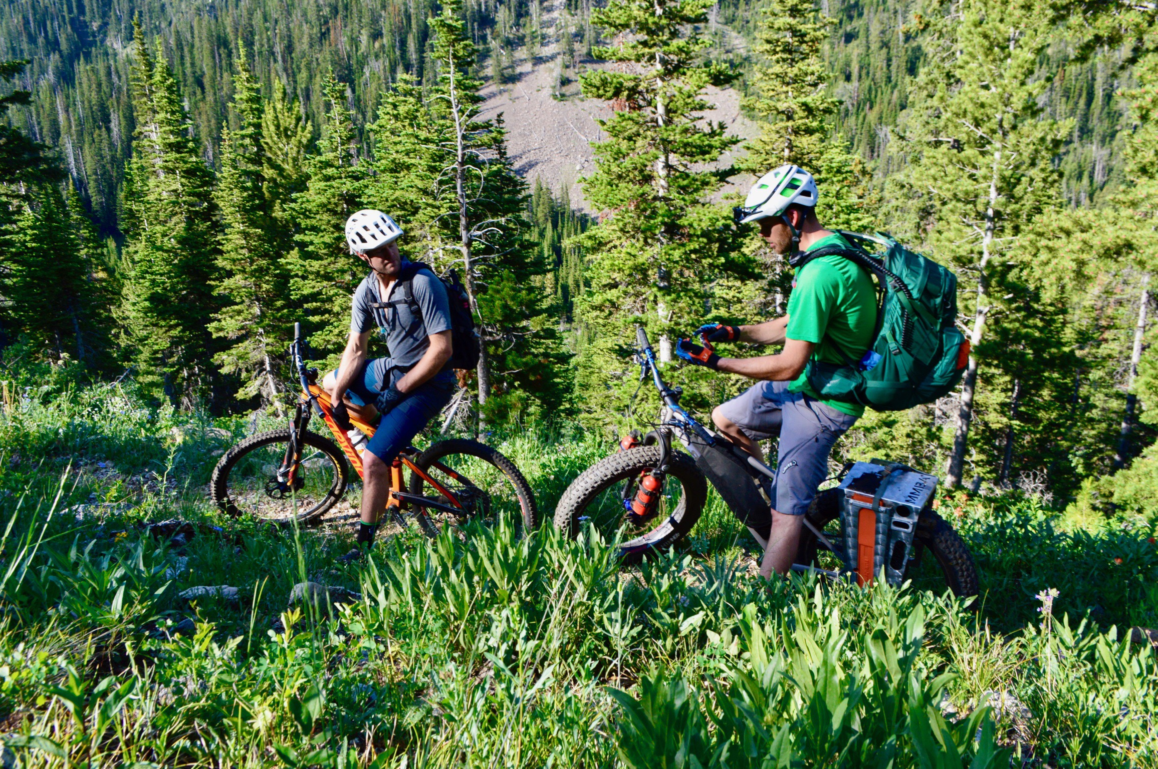 Lionhead - This region of the Henry's Mountains along the border of Montana and Idaho is one of the highest risks for trail loss for cyclists in the next 5 years. With tens of miles of trail currently open to cyclists, and a unique mix of sustainable, high-altitude singletrack in a remote backcountry setting, the Lionhead represents some of the last backcountry trail in existence for cyclists in Montana. This gem is regularly maintained by SWMMBA, where we donate hundreds of hours of trail maintenance yearly to the upkeep of this unique system.