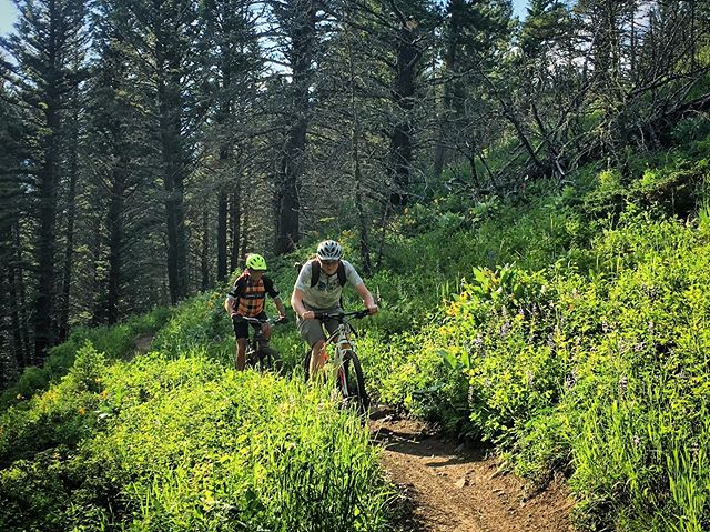 Believe it or not, we're about halfway through our riding season. That's why you should join us on tomorrow's group ride up Truman Gulch. There are only so many opportunities left. Leaving at 6pm from the mall parking lot or meet at the trailhead at 6:30pm. Post-ride refreshments in the parking lot. #Singletrack #Bozeman #Montana