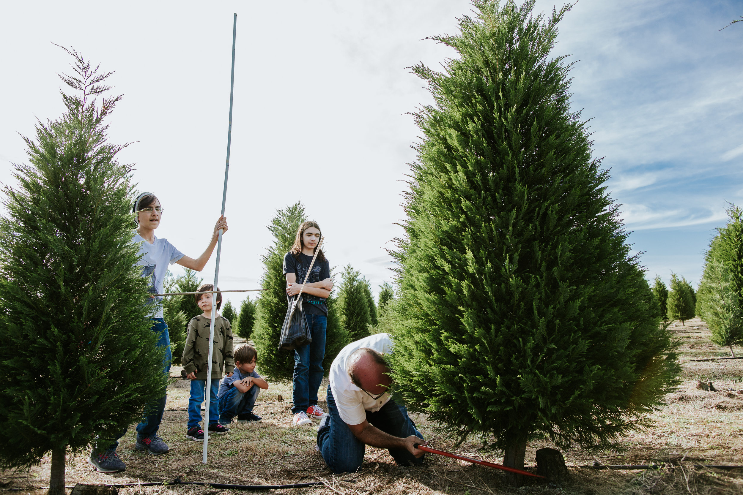Cut your own Christmas tree at Devine Acres Farm. Devine, TX Photo by Norma Hess Photography rgvbirthphotography.com