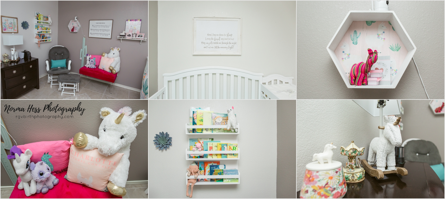 Beautiful girl's nursery in McAllen, Texas | Photo by Norma Hess at sojourningbirth.com