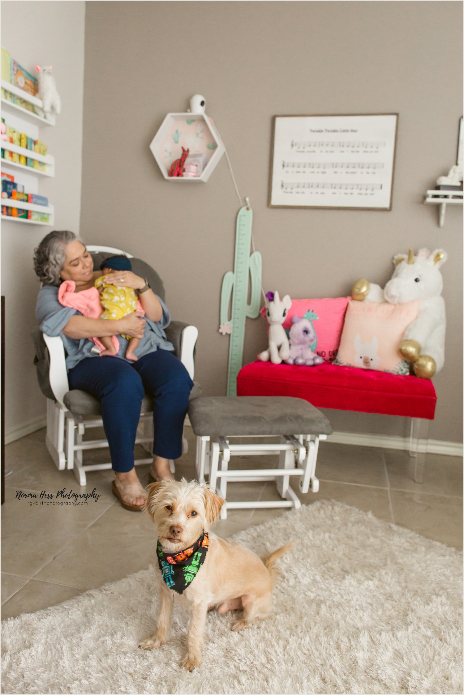 Including your family pet in your family session is so easy with lifestyle in-home sessions. Big brother (Odie) patiently waits for Grandma to burp little sister. | Photo by Norma Hess sojourningbirth.com