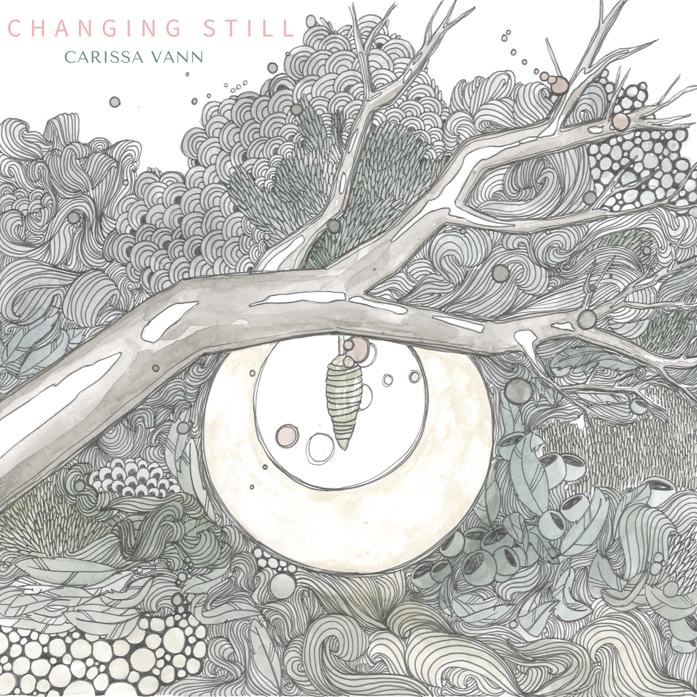 (Click the Album Cover to purchase a digital copy or pre-order the album)