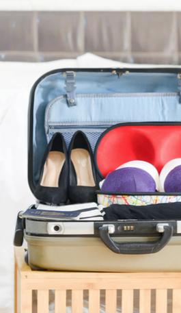 BraKitty Bra Travel Case