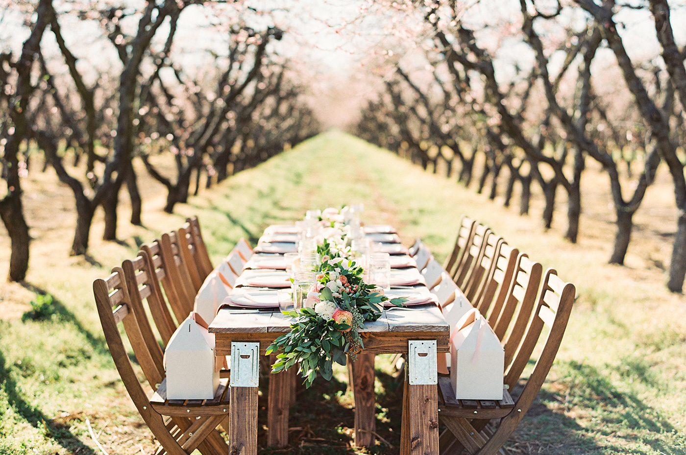 Inspired by This - Have you have dreamed of popping up a party in the middle of a blossoming orchard?! We have, then set out to make it happen! See all the peachy details over on Inspired By This.