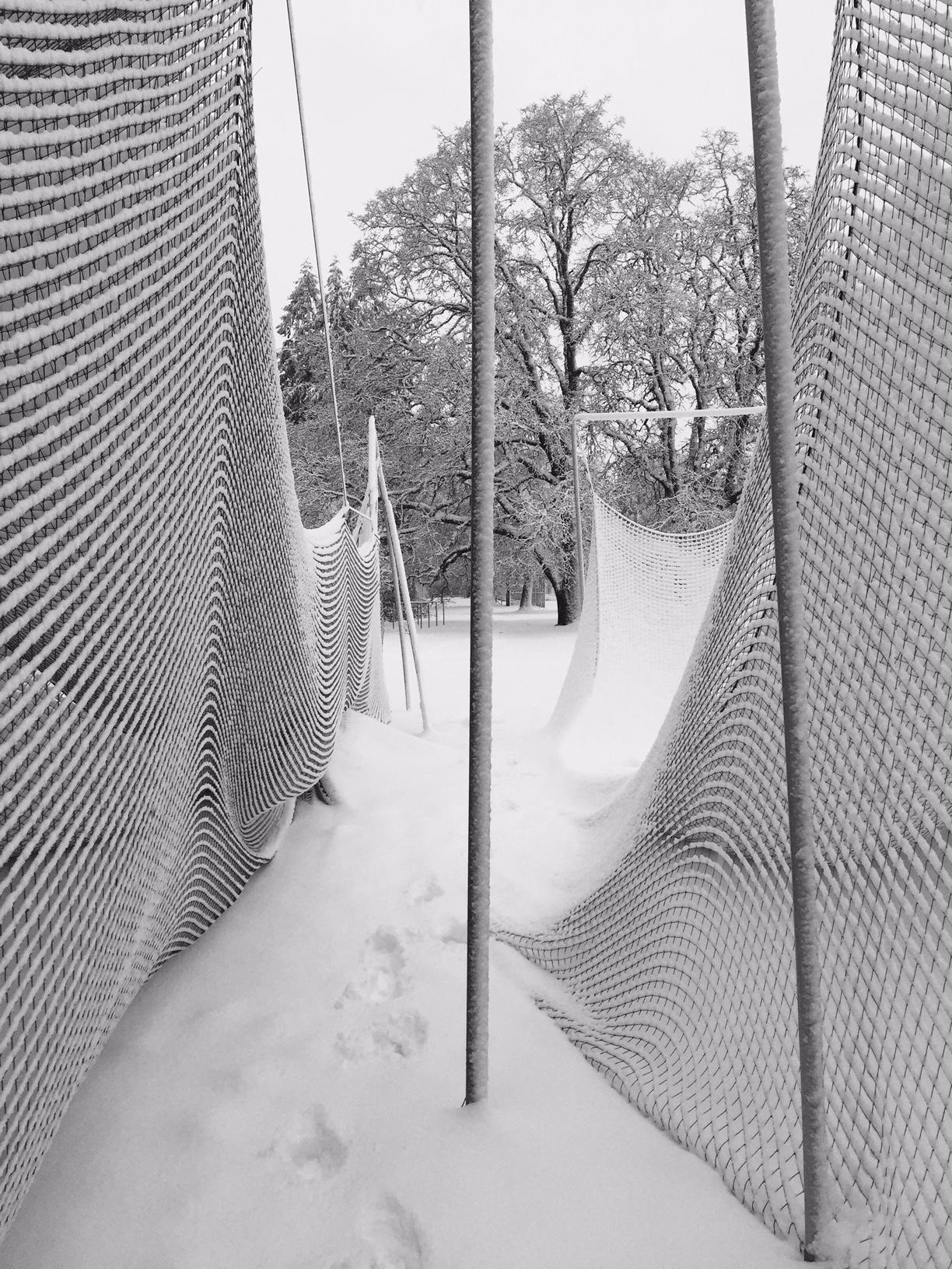 Snowfield 03