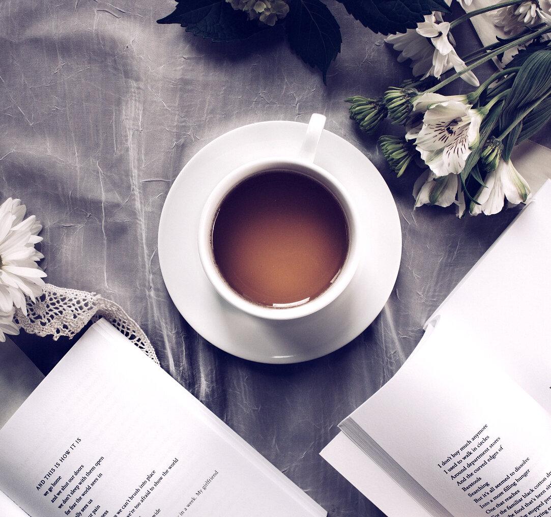 Tea cup Carnation Filter.jpg