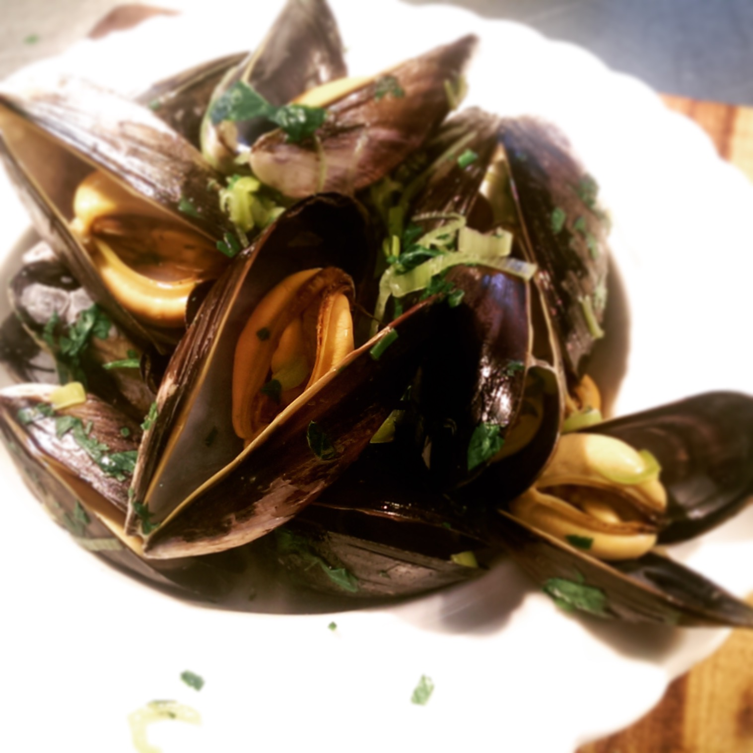 Exmouth Mussels