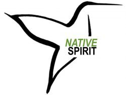 cropped-Native-Spirit-logo.jpg