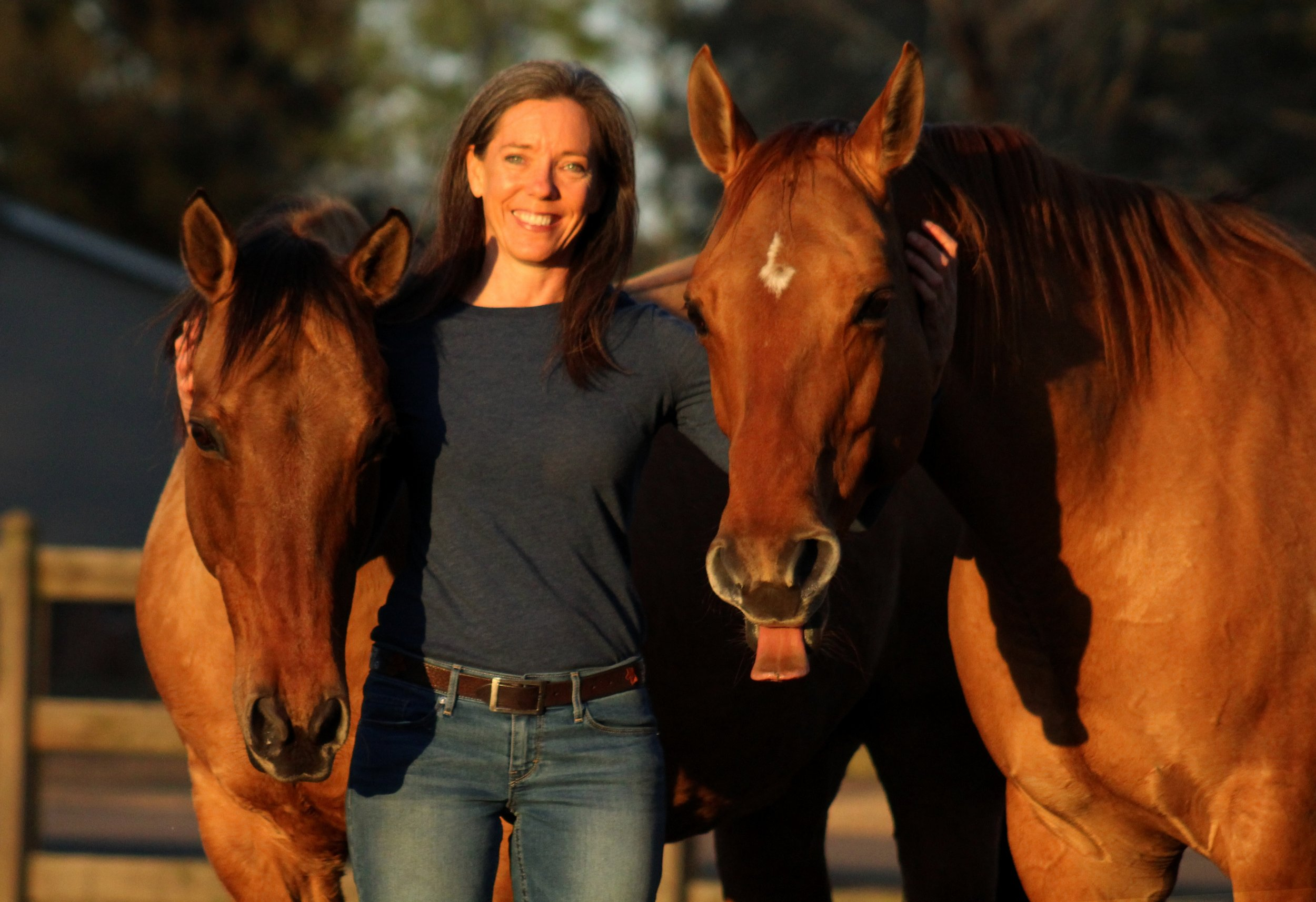 kim-halin-undridled-horse-personal-coaching-therapy-workshop-living-high-vibe-insiprational-video