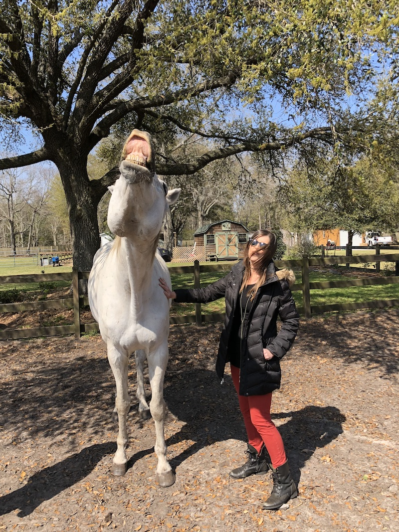 living-high-vibe-video-series-inspiration-unbridled-horses-south-carolina
