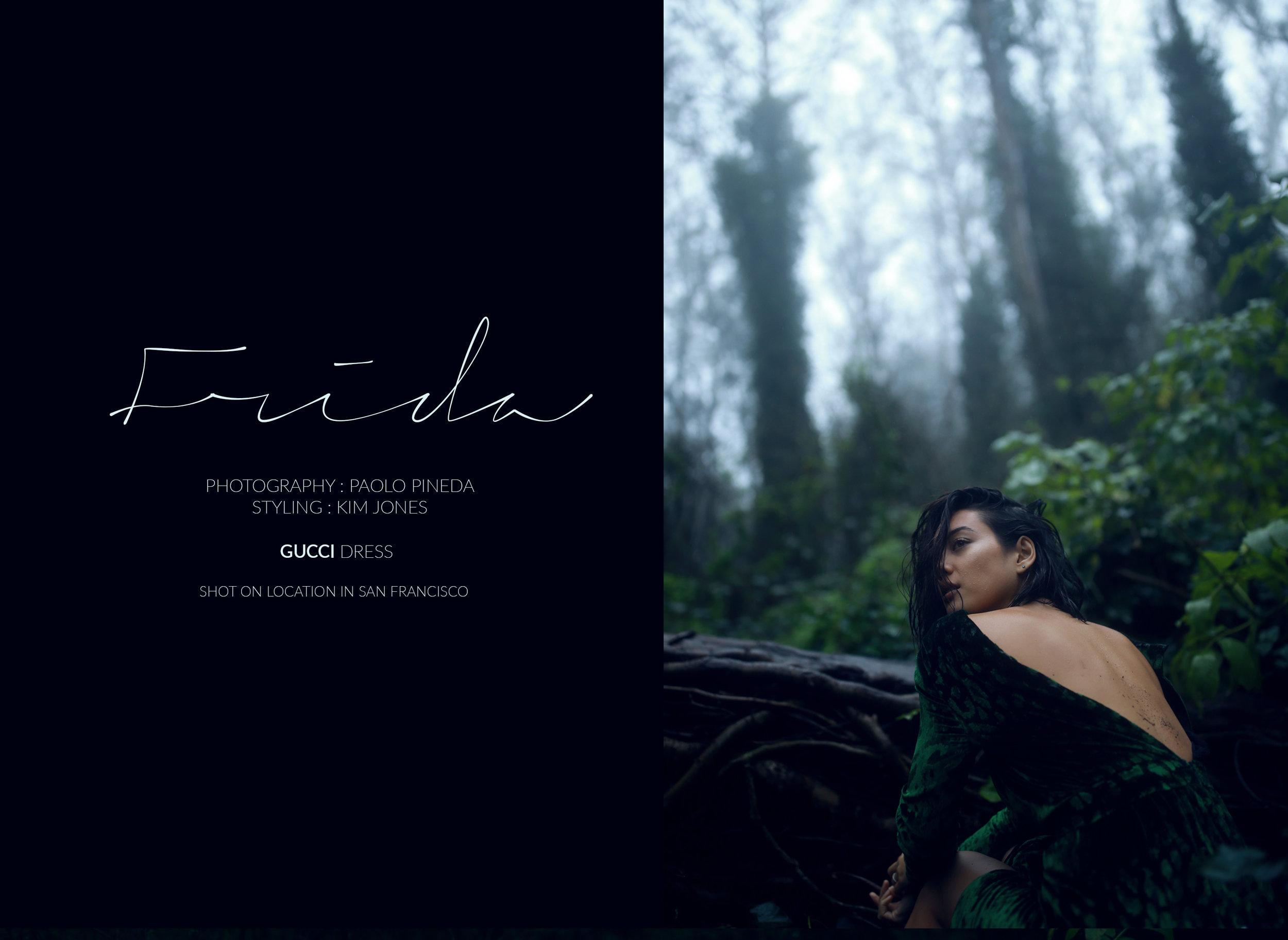 Frida-header-copy.jpg