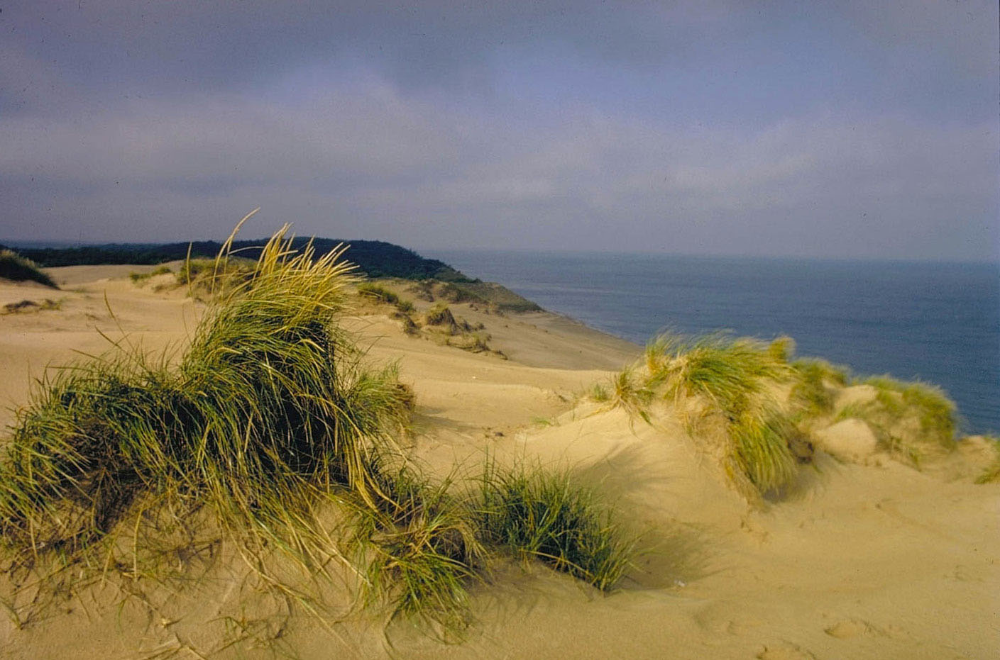 Indiana Dunes National Lakeshore. Credit: National Park Service, M. Woodbridge Williams. Used under Creative Commons License.