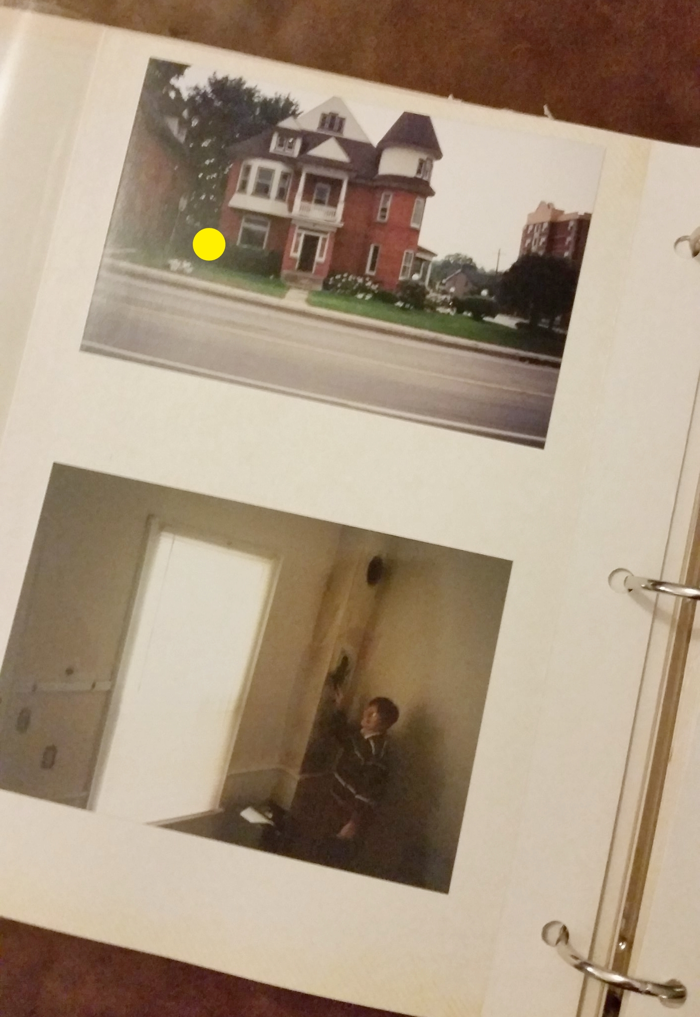 1992 - Barrie, On * My First Nest *