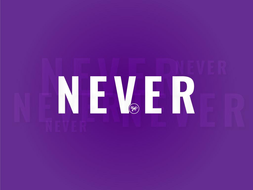 NEVER-SERIES3.jpg