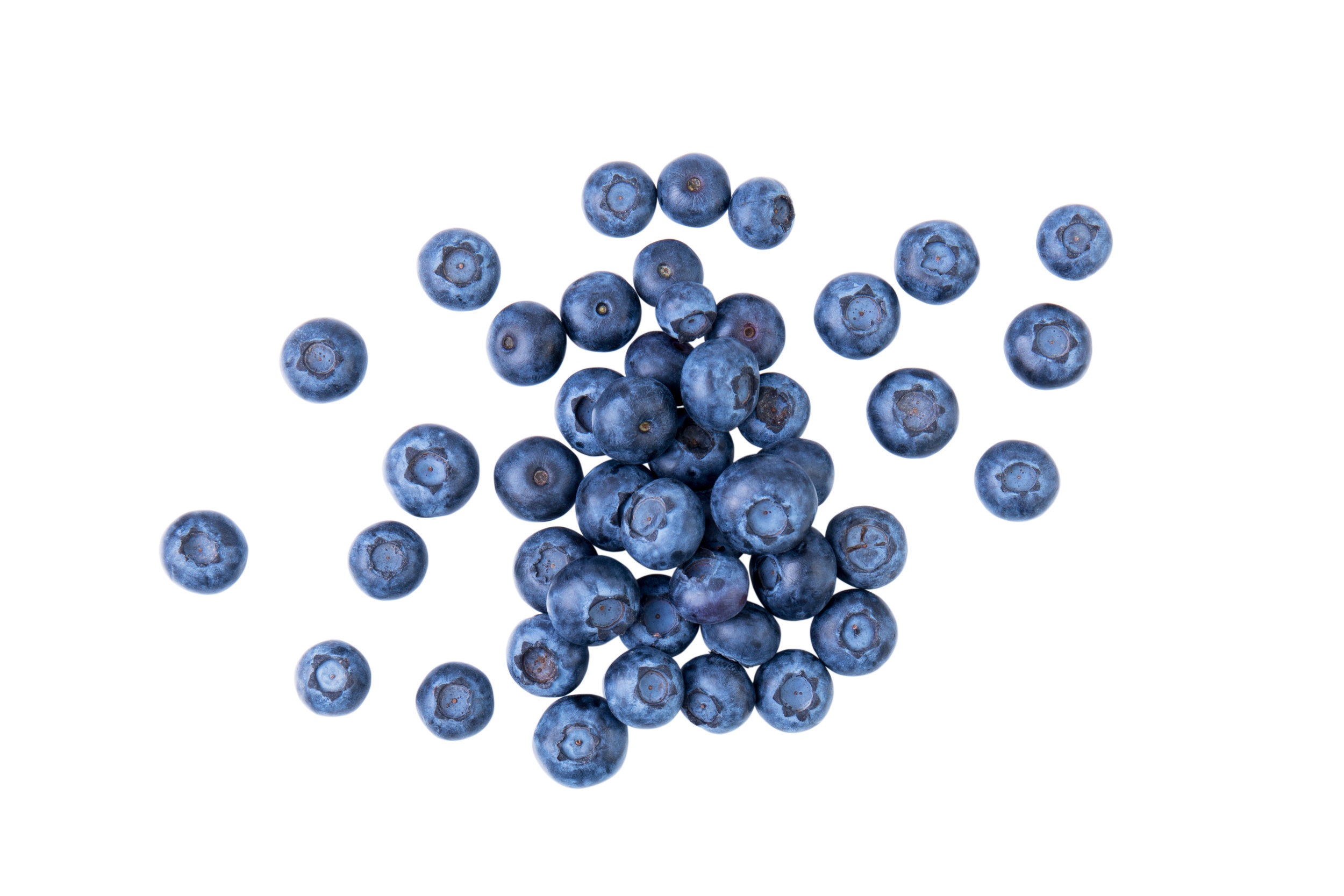 - Blueberry extract one of the richest antioxidants. It includes anthocyanins, a class of compounds that reduces inflammation and protect against heart disease and cancer.