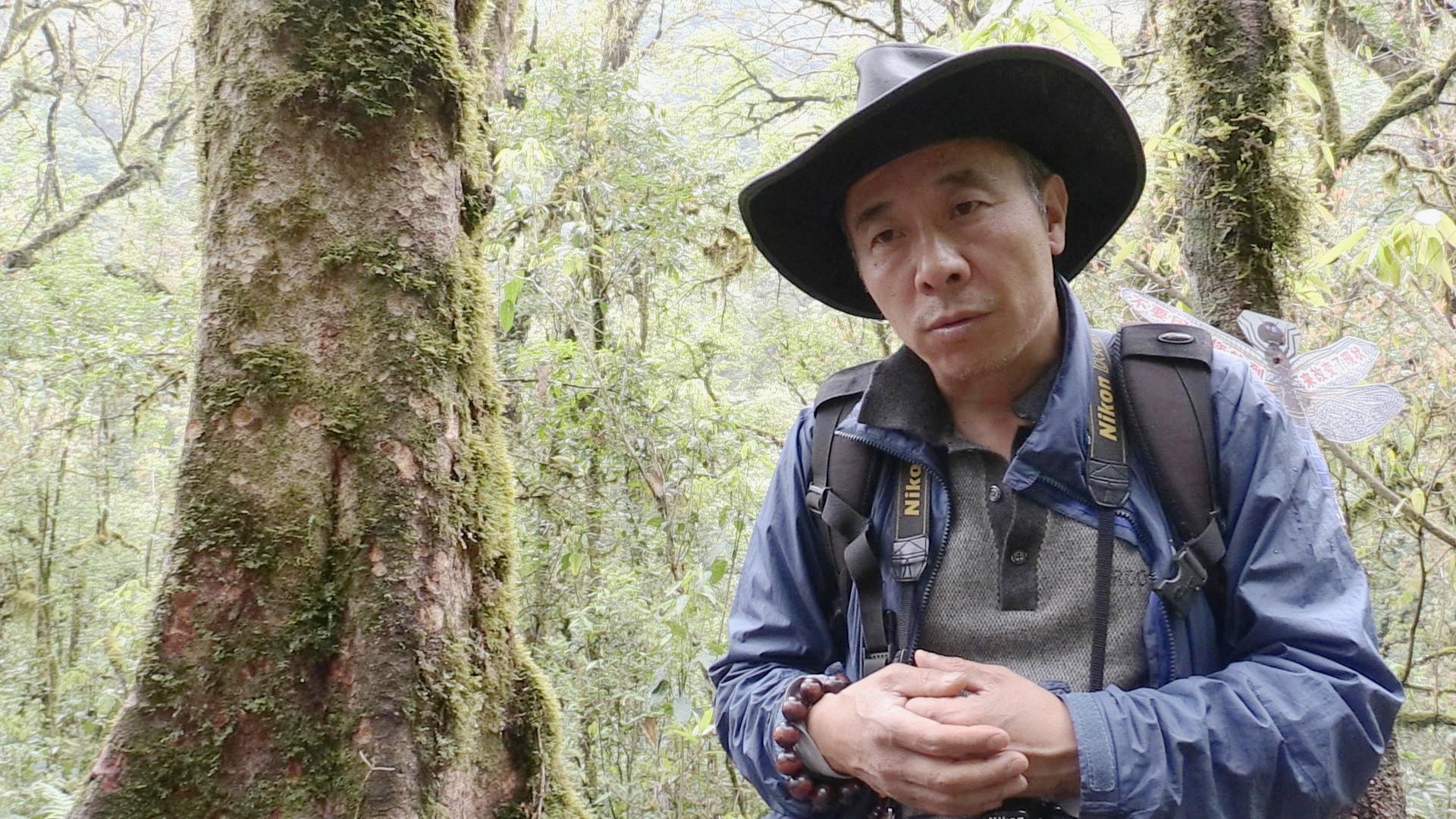 Fang Zhendong   Conservation Biologist   Fang Zhendong is the director of the Shangri-la Alpine Botanic Garden, located in Shangri-la, Yunnan province.