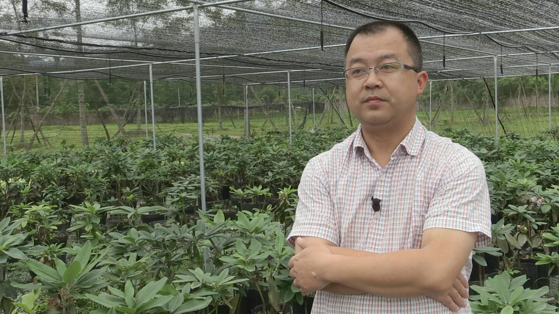 Zhang Chao   Botanist   Zhang Chao is the associate director of the Huaxi Subalpine Botanic Garden, Sichuan Province.