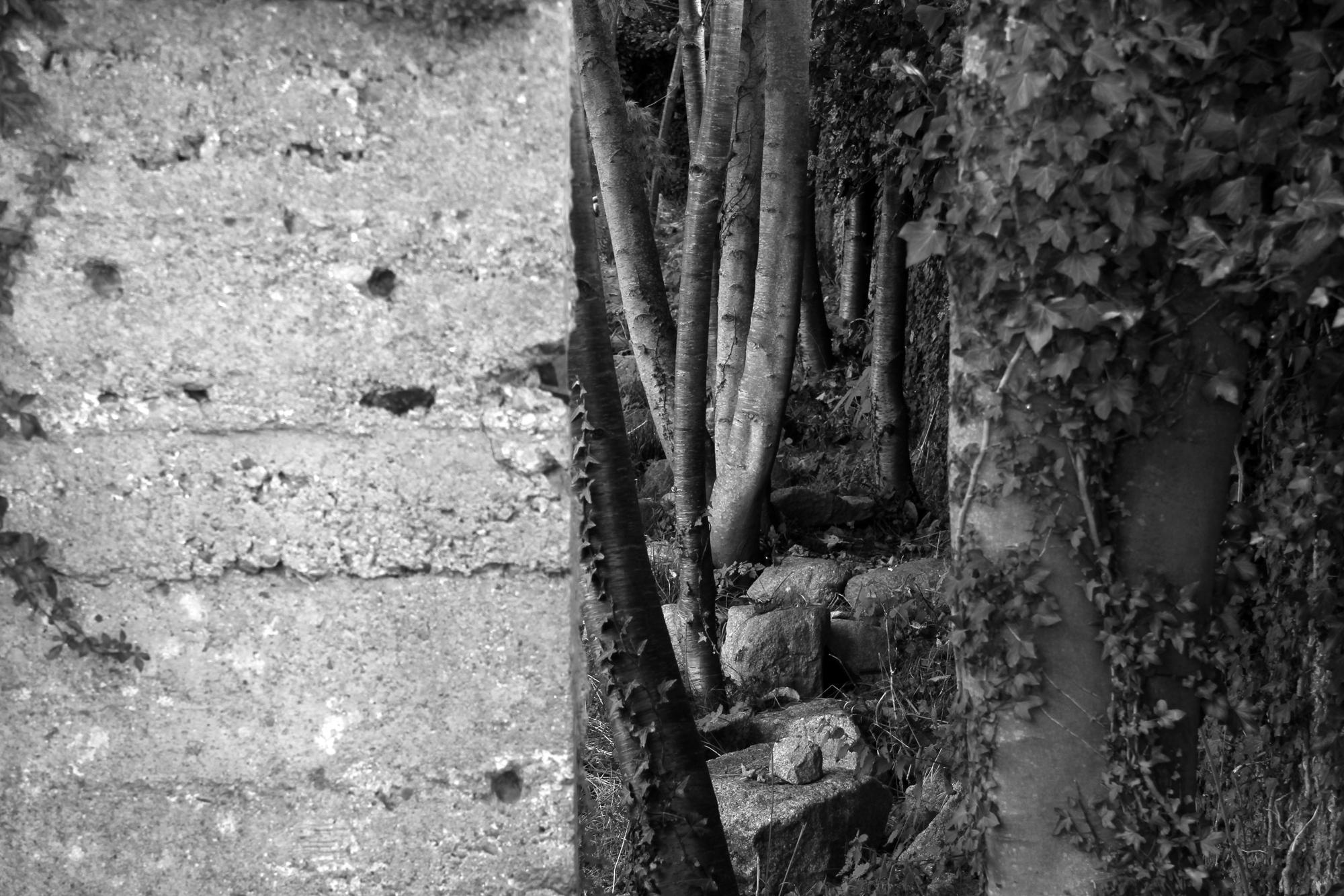 Wyngates , Greystones (dePaor). photograph Peter Maybury