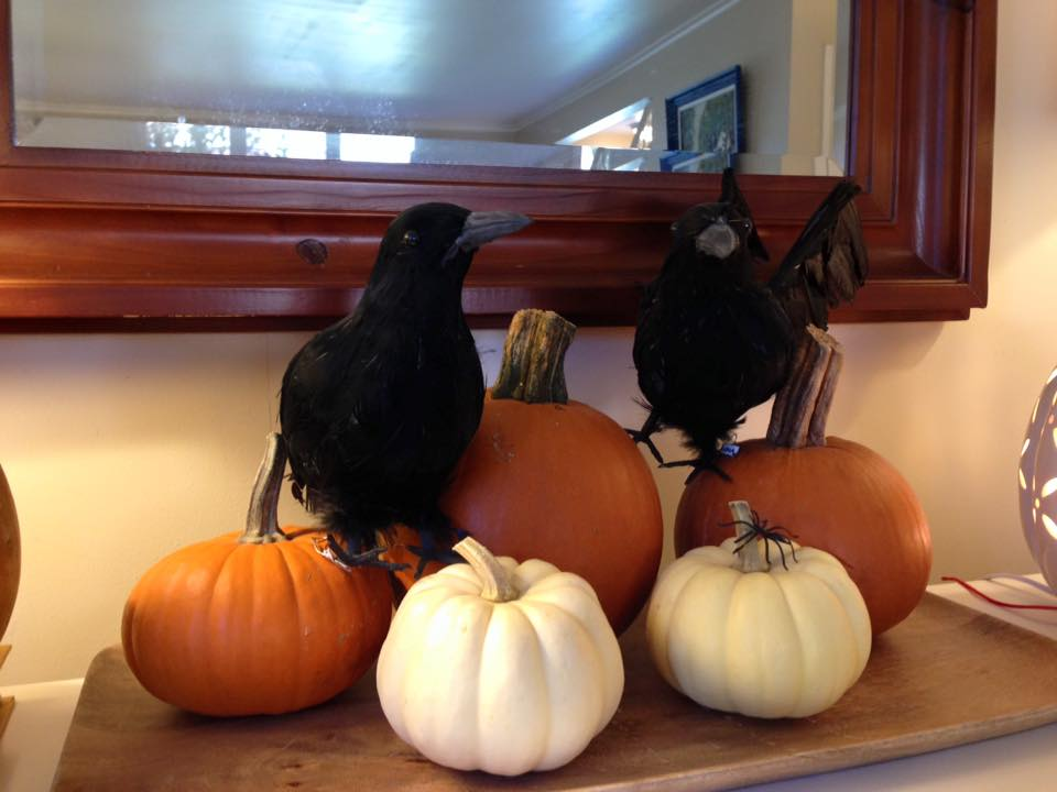 Here some small pumpkins and gourds sit atop a wooden tray and add a fun touch to an out of the way corner of our living room. With some dollar store decorations, they get a little spooky for Halloween.