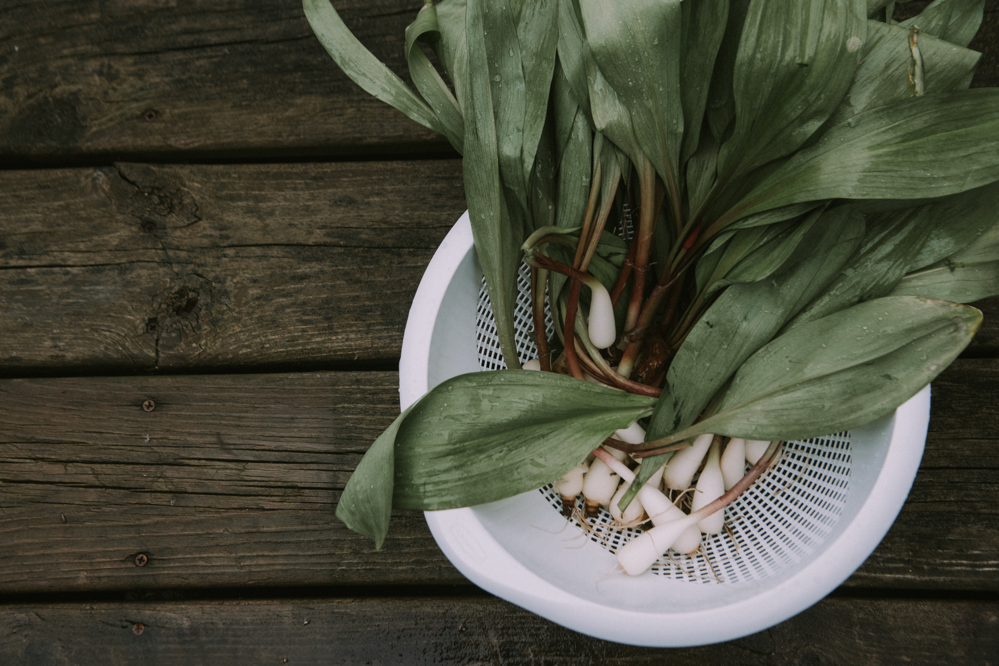 ramps-recipes