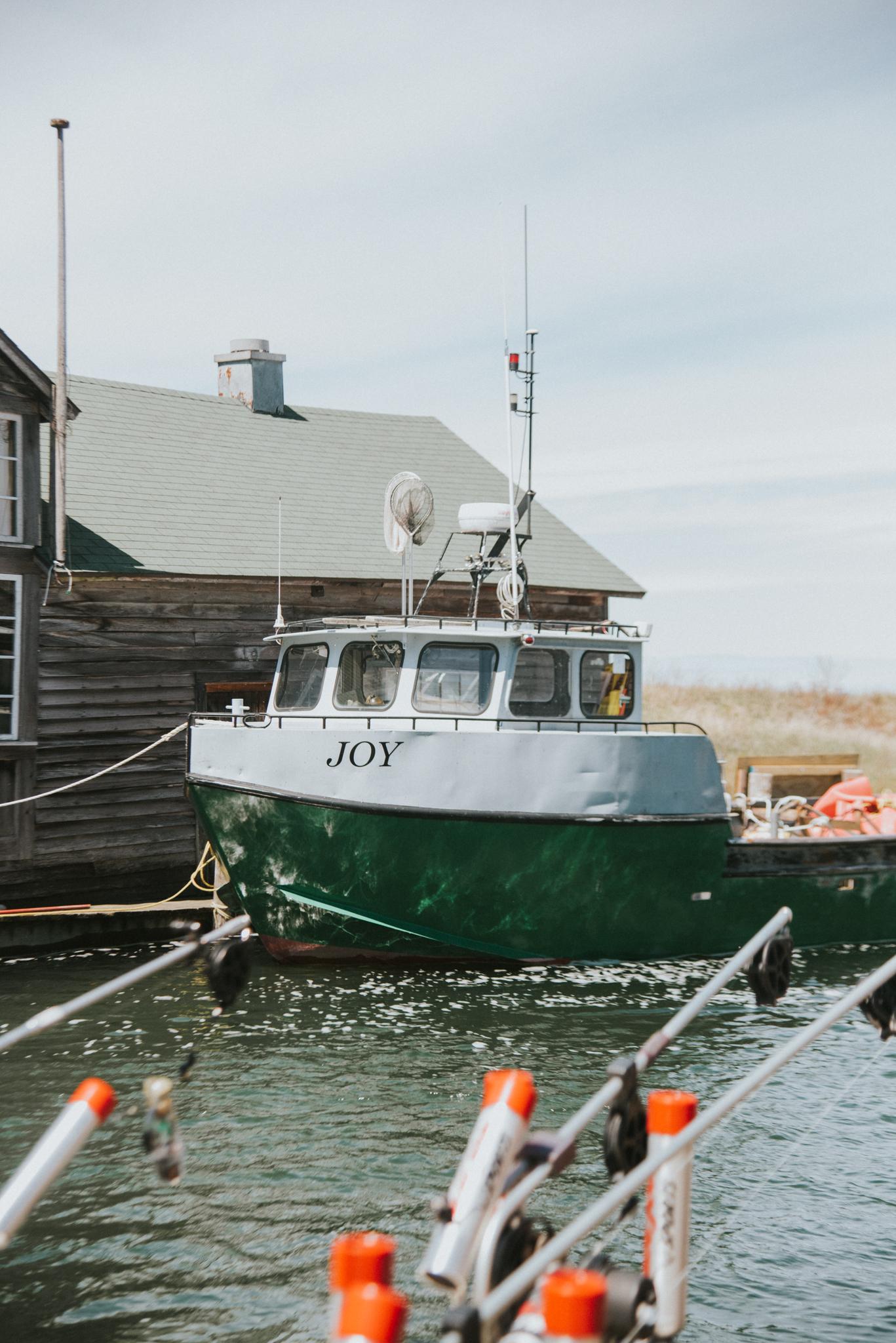joy fishtown leland