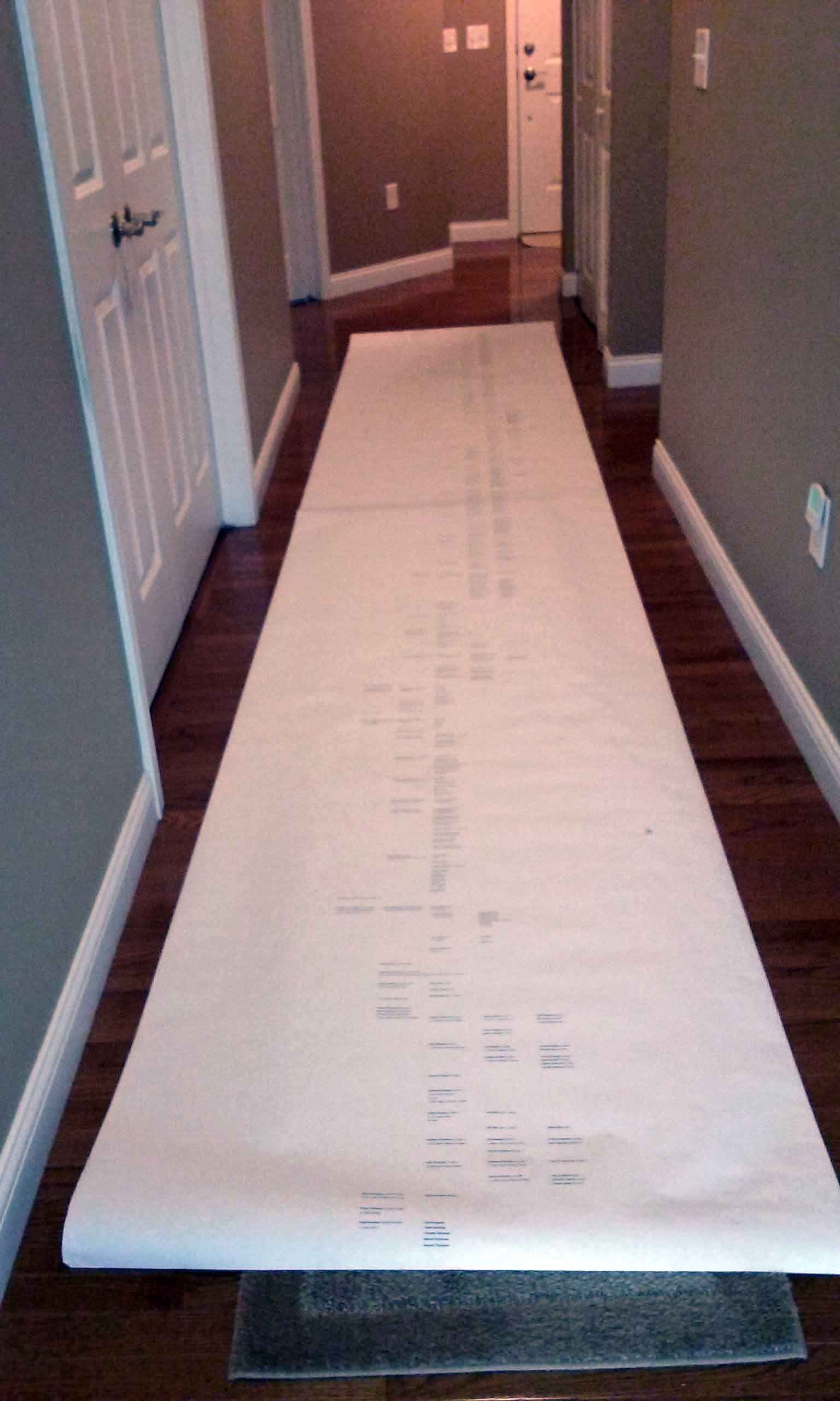 JoAnne's family tree. It contains over 900 names and it is 3ft. wide and 18ft. long.