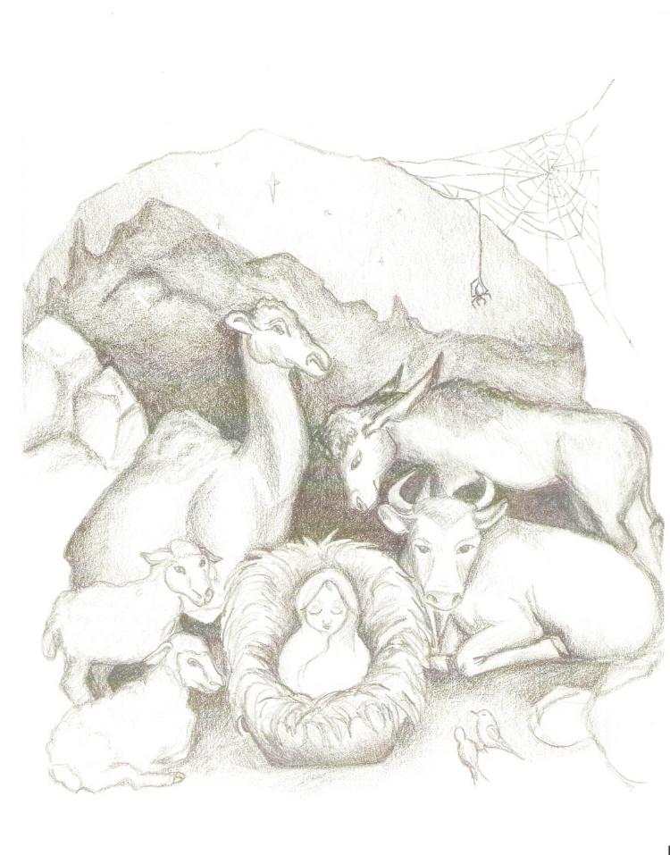 illustration2.jpg