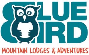 BLUEBIRD_Logo_web_big.jpg