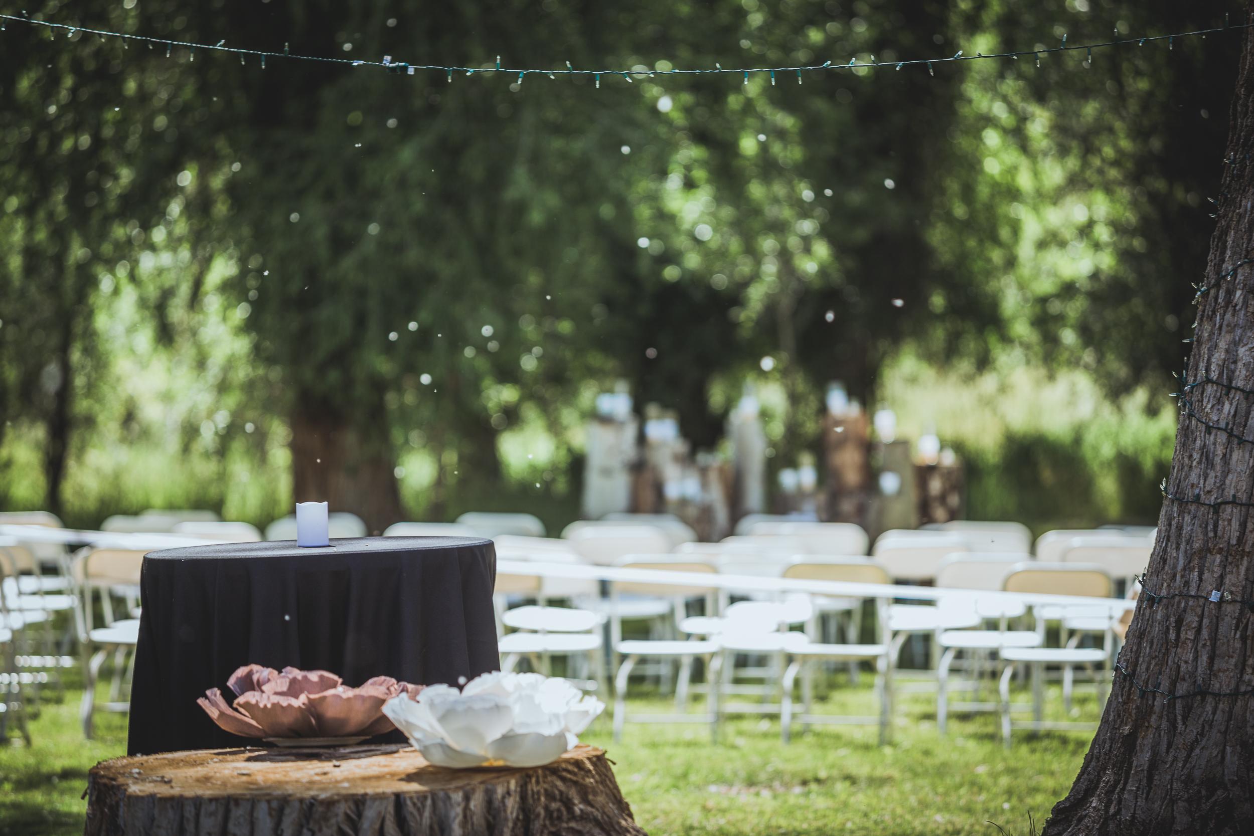 Denver-Wedding-Photography-IMG_9908.jpg