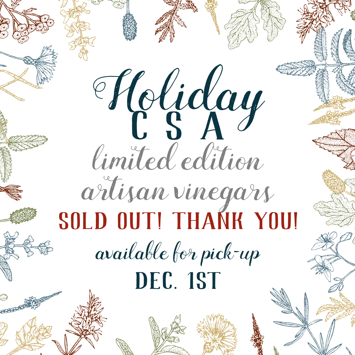CM CSA vIG-sold out.jpg