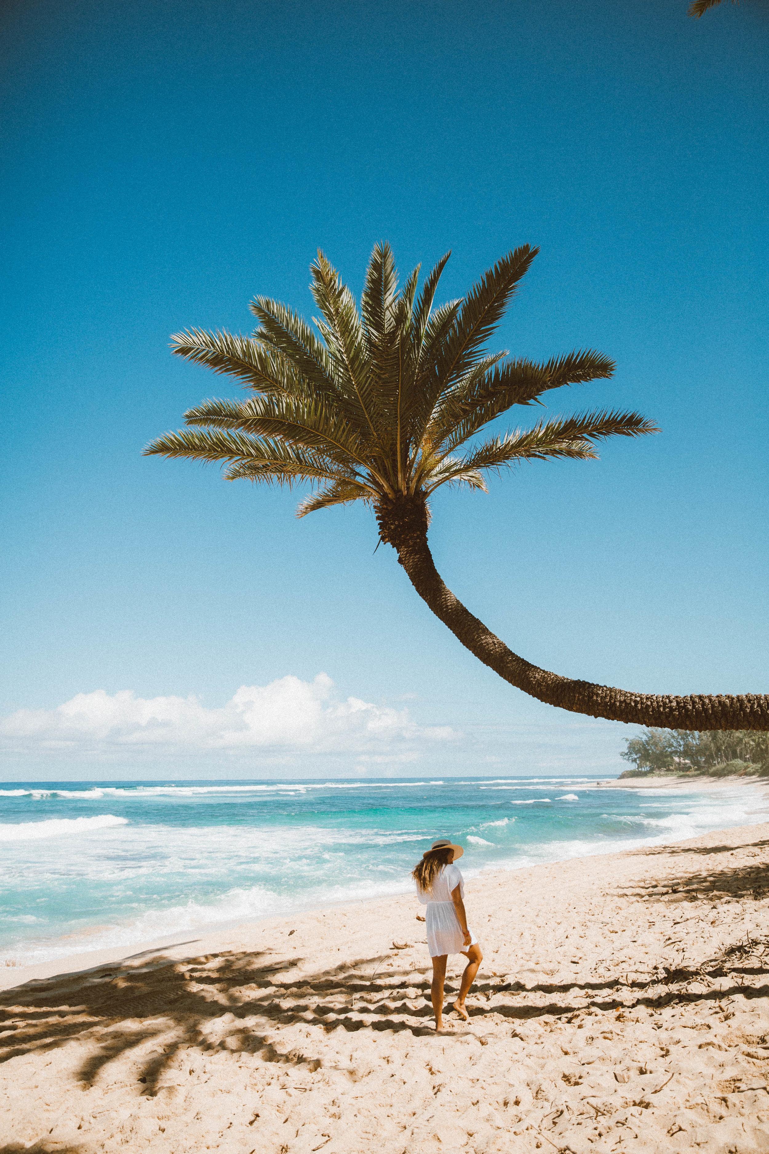 Hawaii Travel Tropical Vacation