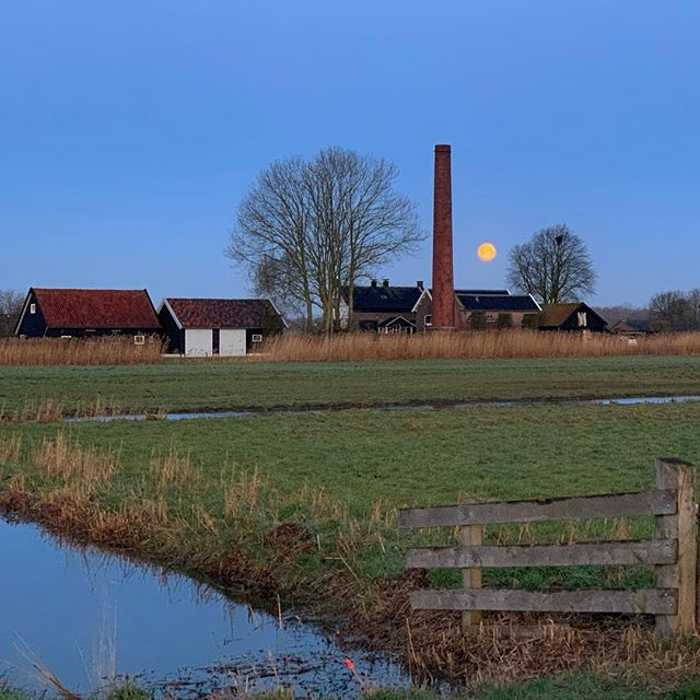 Earth is amazing and the moon has a way of helping me to remember that. . . #planet #moon #satellite #polder