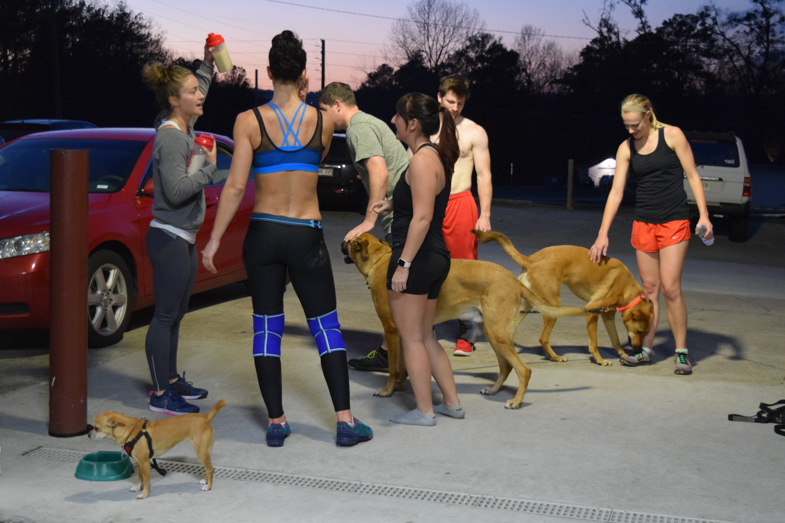 CrossFit and Puppies