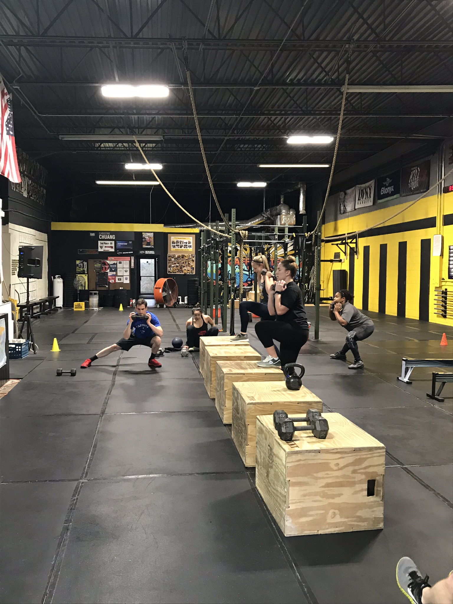 Lunges and Step Ups