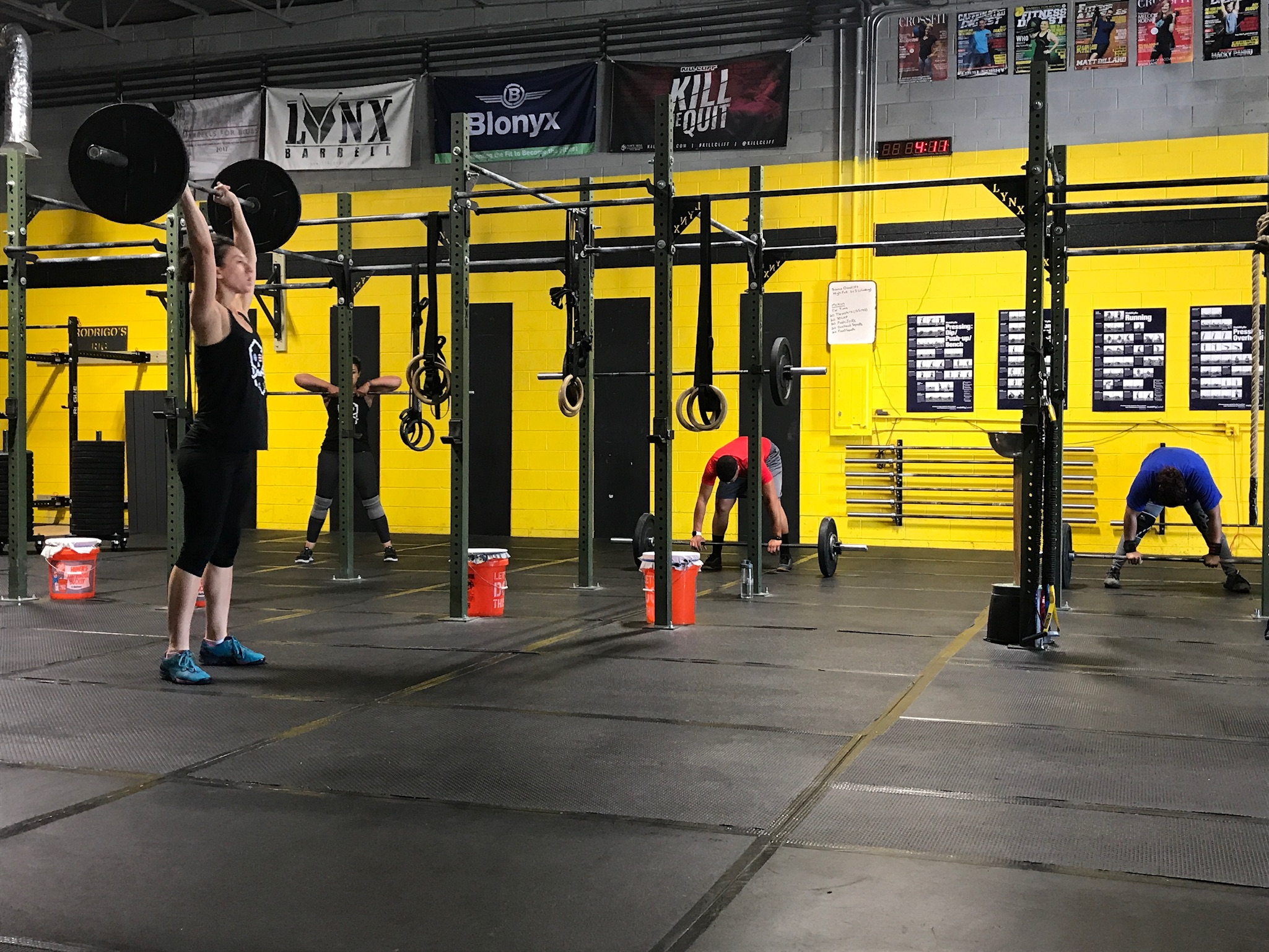 All The Barbell!
