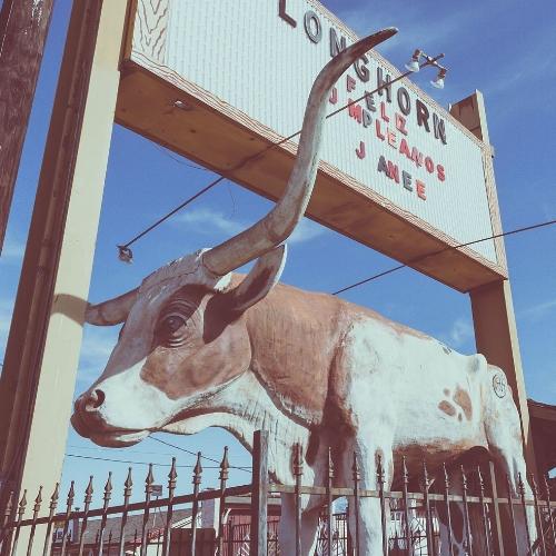 Longhorn_Ballroom_Sign_and_Bull.jpg