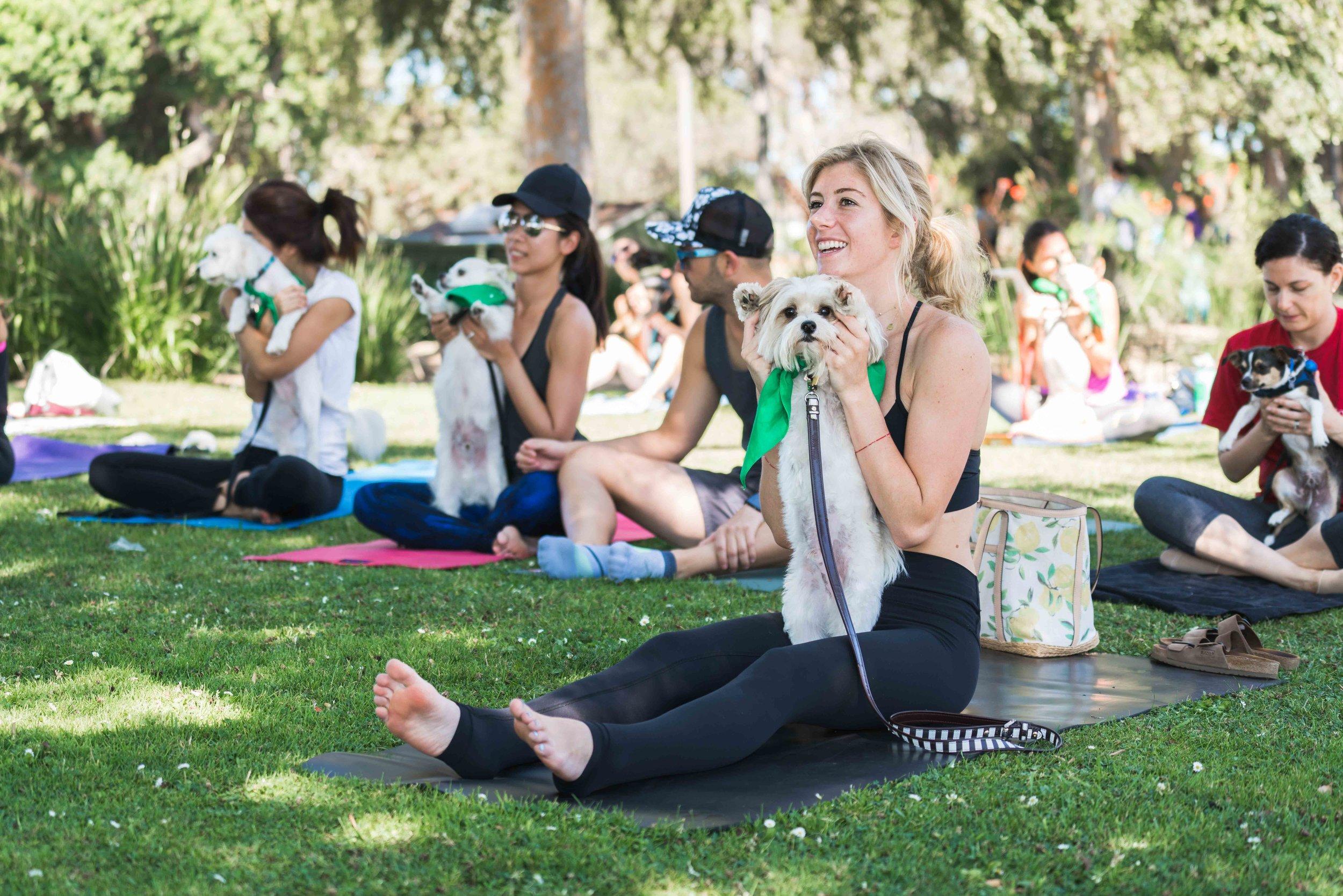 Healthy Spot Yoga.jpg