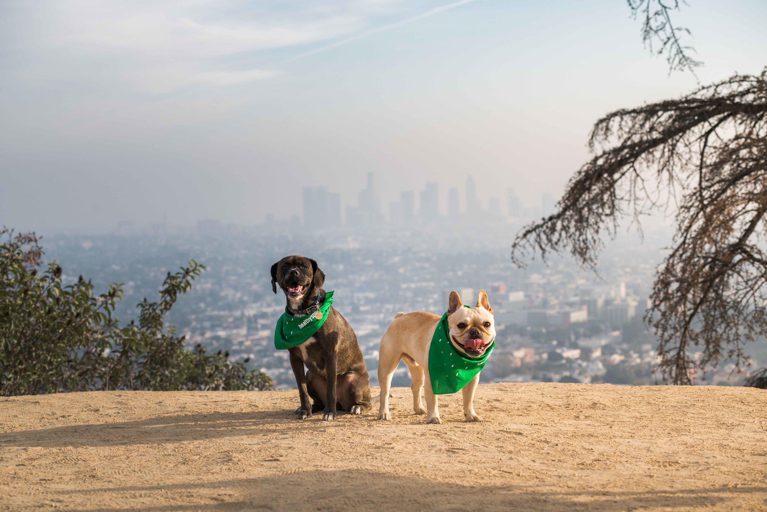 Healthy Spot LA Locations_small-66.jpg