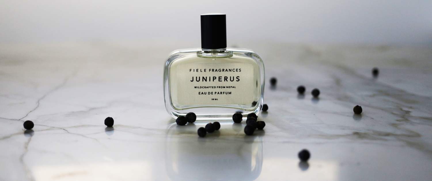 FIELE FRAGRANCES   At the heart of this luxe brand is the desire to capture the elusive purity of nature's most precious plant essences. Pronouced  fil,  they borrow their name name from an old West Frisian word meaning  to feel,  emphasizing a focus on the multi-sensory benefits of natural extracts.