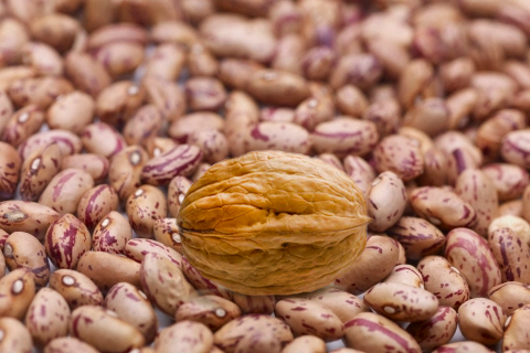 Walnut Among Beans.png