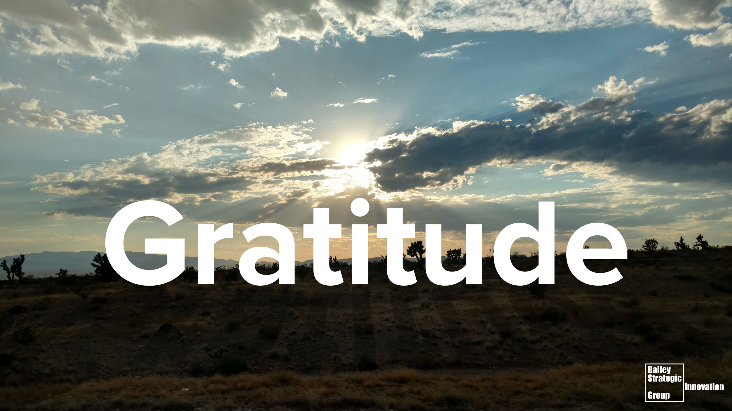 Gratitude in Joshua Trees National Forest ©2017 Eric Bailey