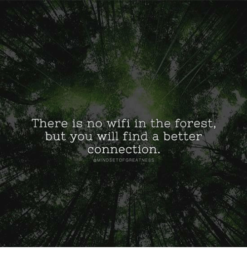 there-is-no-wifi-in-the-forest-but-you-will-25854056.png