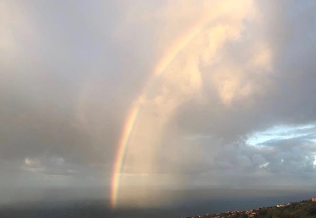 reiki_rainbow_london.jpg
