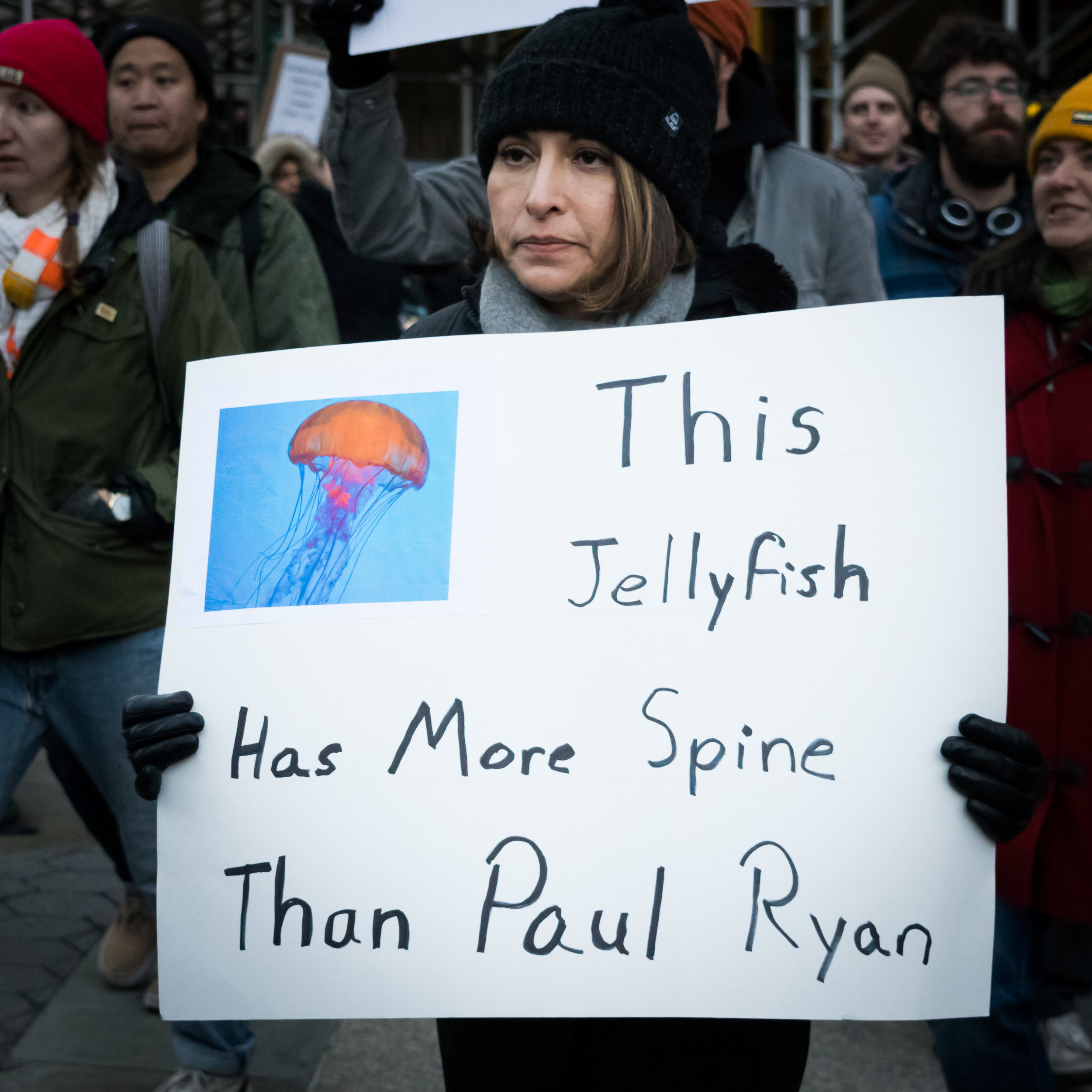 """This Jellyfish"""