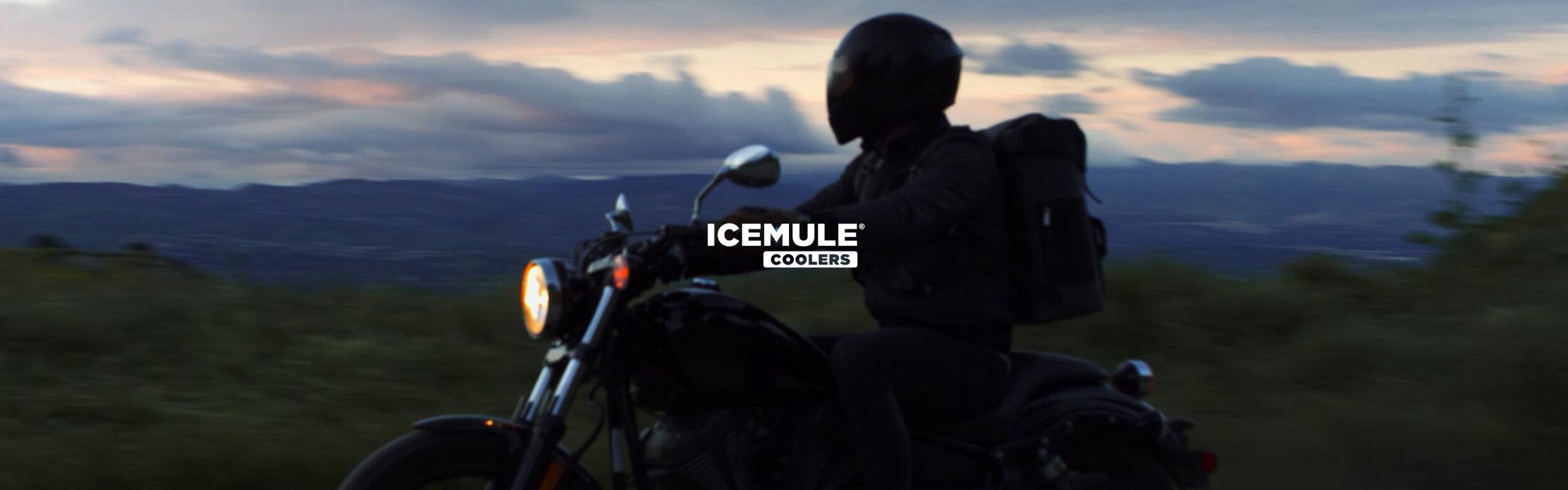 ice mule poster_00000.jpg